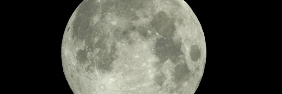 150714.luna_P-900x300